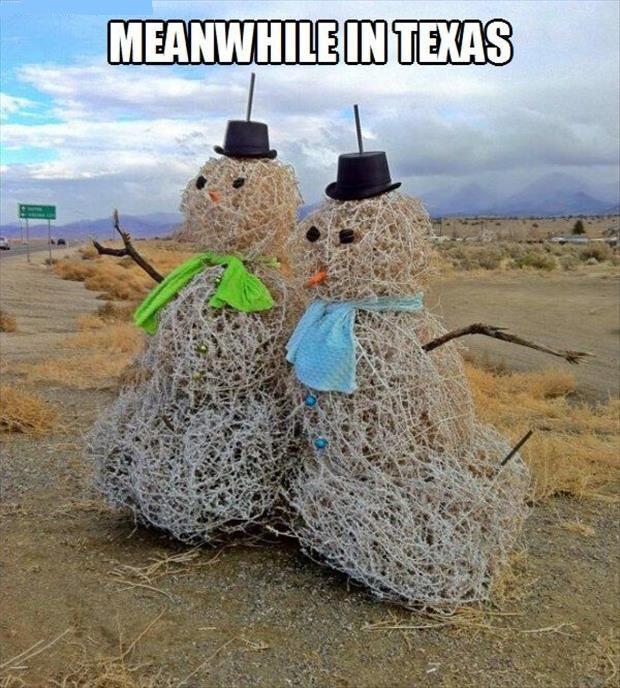 texas snowmen_image courtesy of lauraagudelo272.wordpress.com