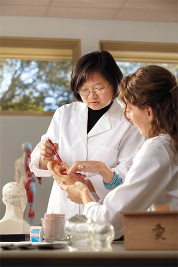 graduate program in acupuncture and chinese medicine