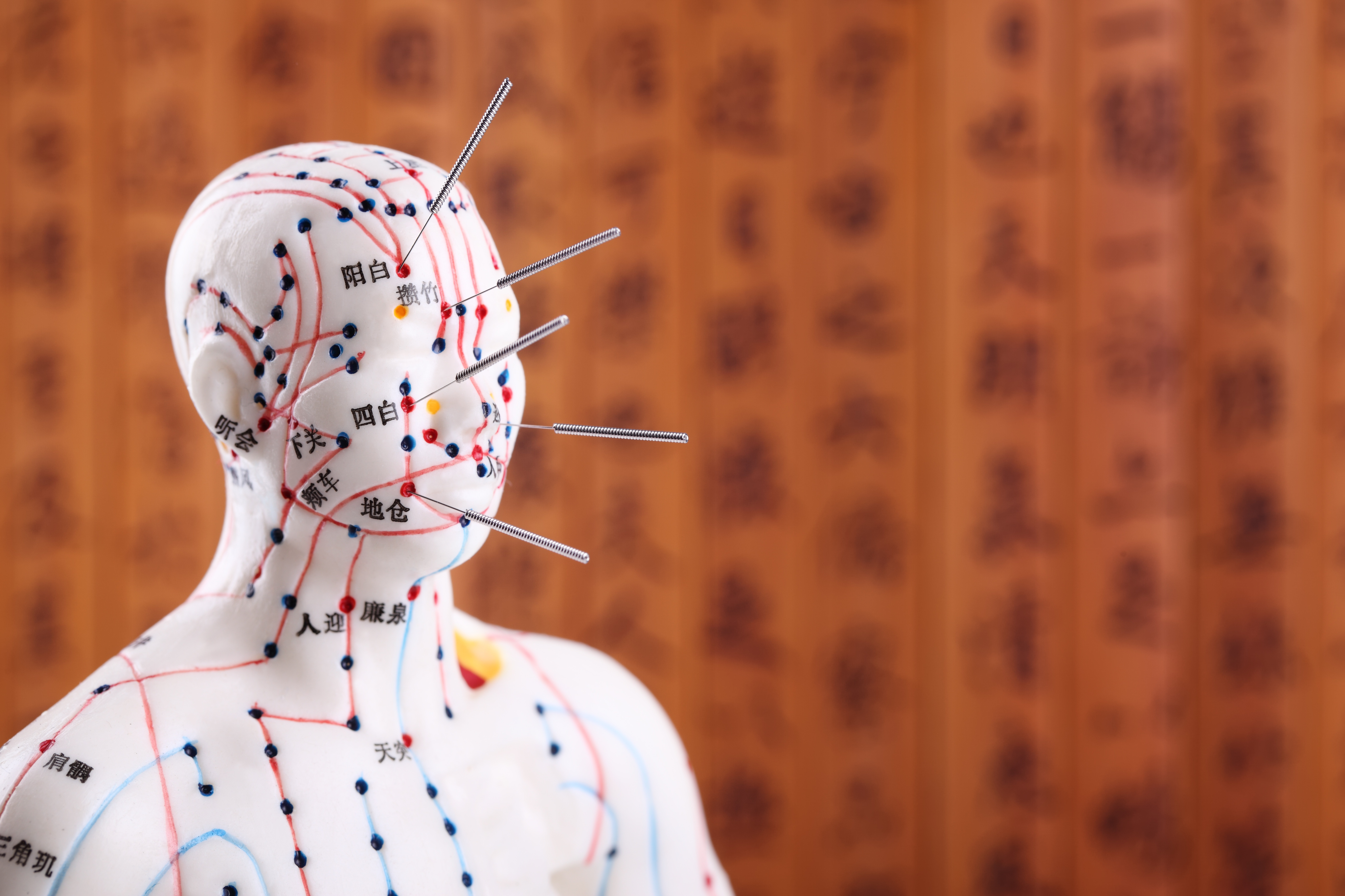 AcupunctureSchool