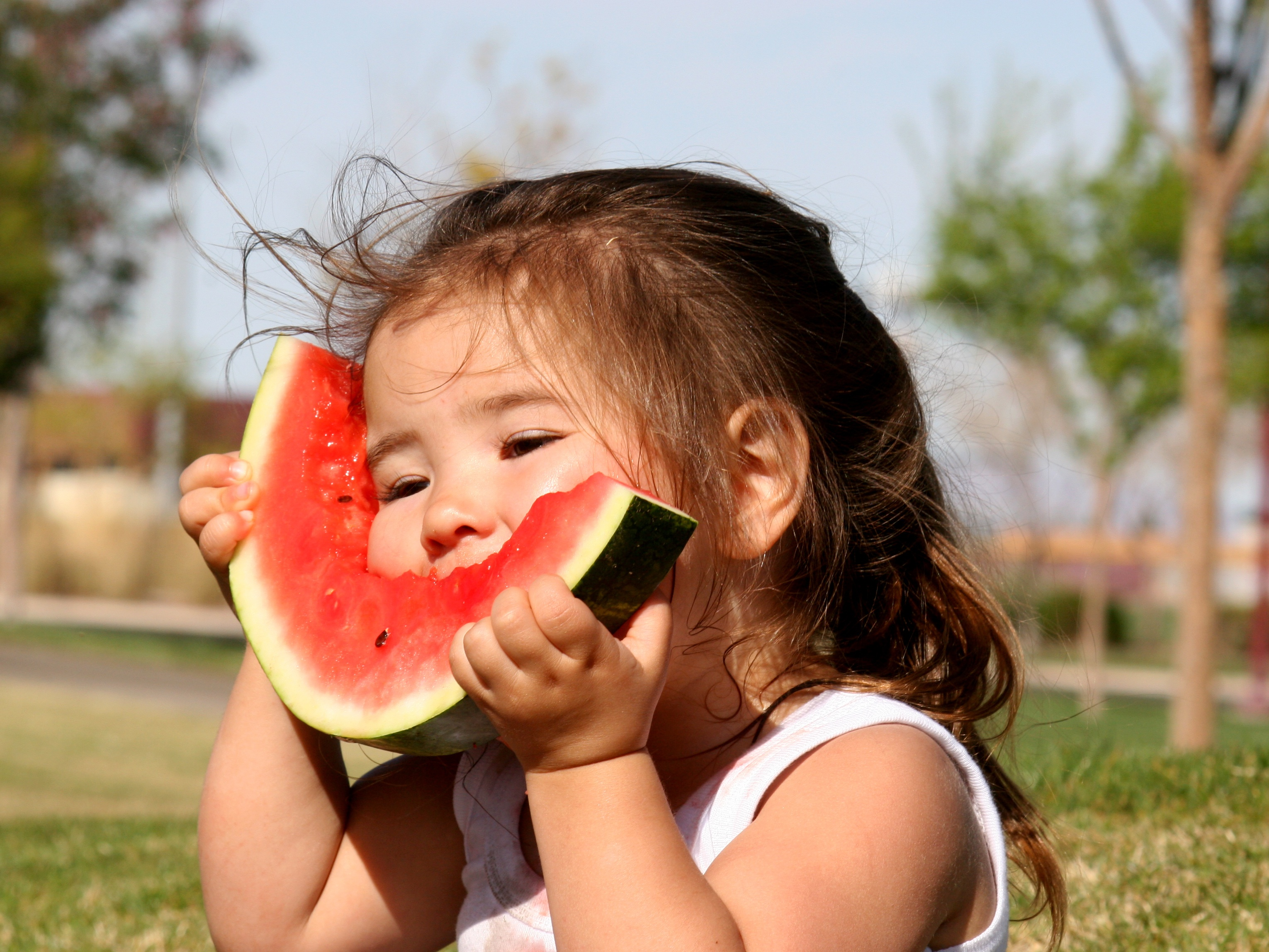 TCM watermelon health for summer