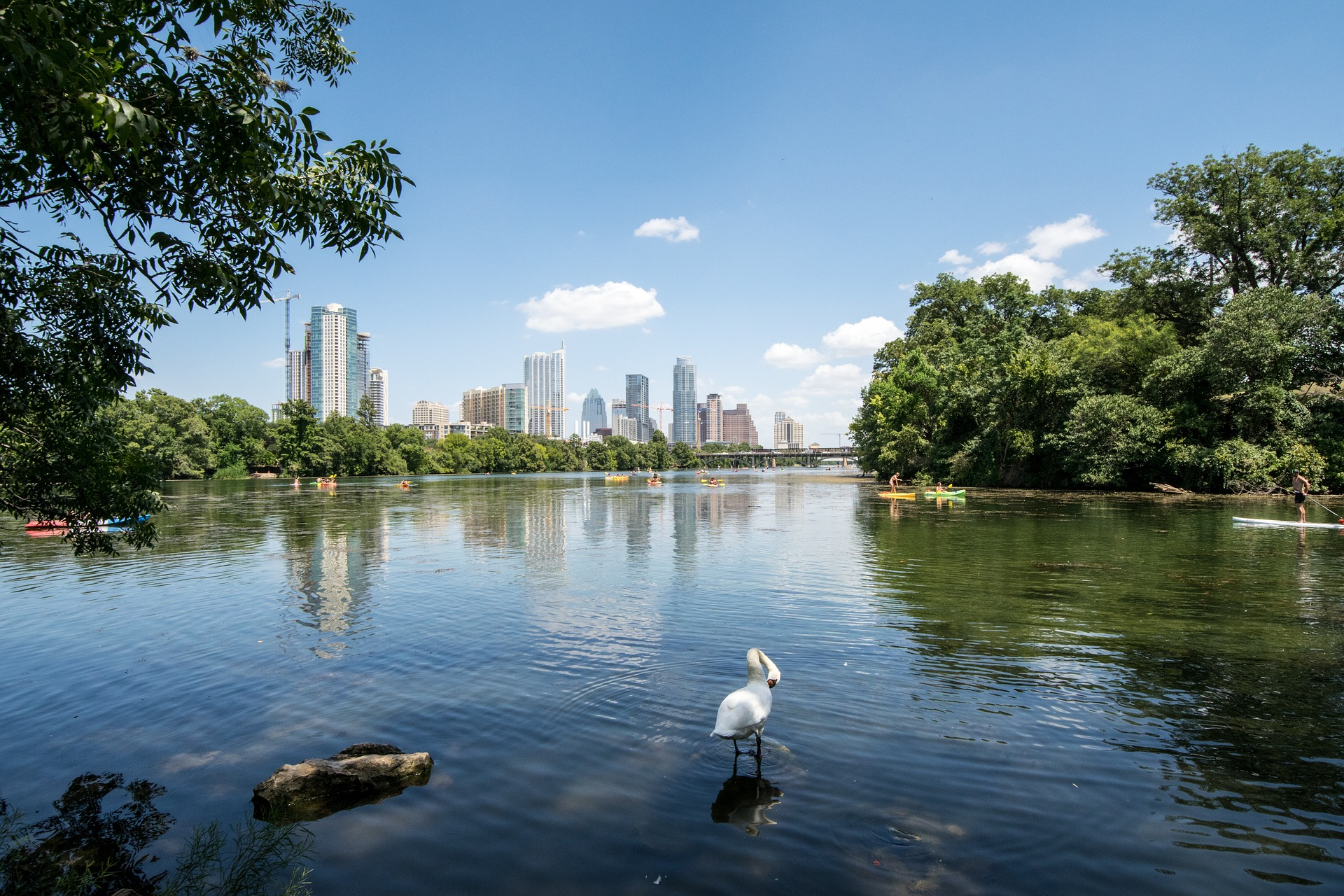 Lady Bird Lake Austin