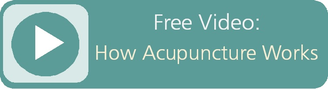 Watch Free Video: How Acupuncture Works